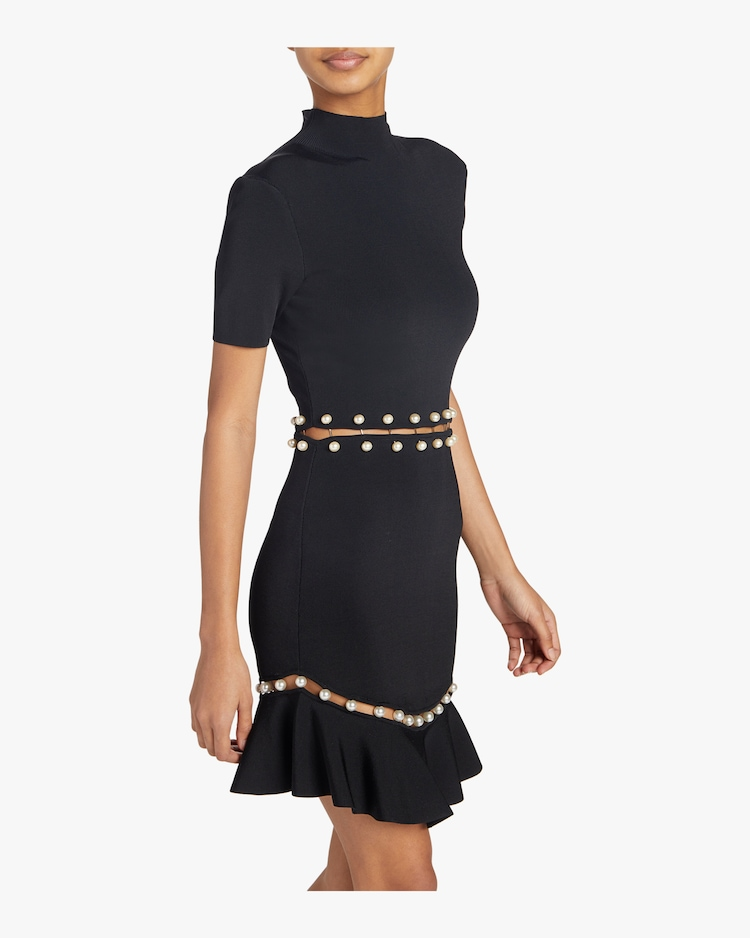Evelyn Fit and Flare Dress Alice and Olivia