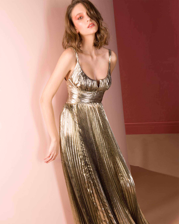 Maria Lucia Hohan Amalia Chiffon Gown 1