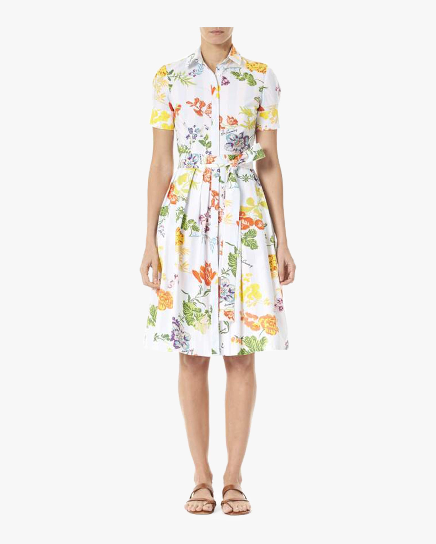 Knee Length Shirt Dress