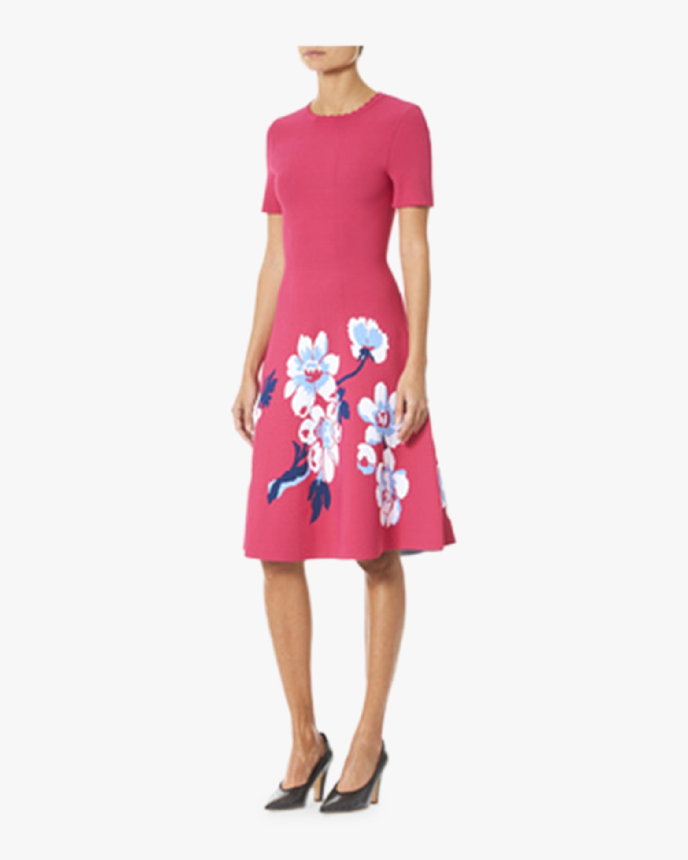 Floral A-Line Knit Dress