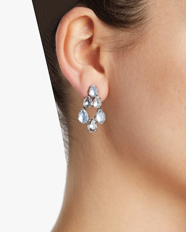 Larkspur & Hawk Caterina Swag Earrings 2