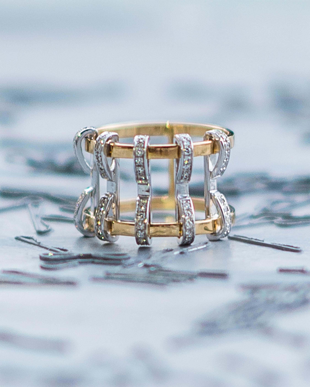 Swati Dhanak Five Pin Ring 2