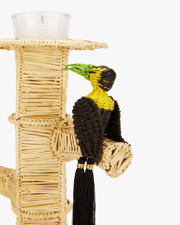 Mercedes Salazar Home Set-of-Two Black Toucans Candlesticks 1