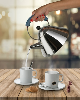 ALESSI Michael Graves Tea Kettle 2
