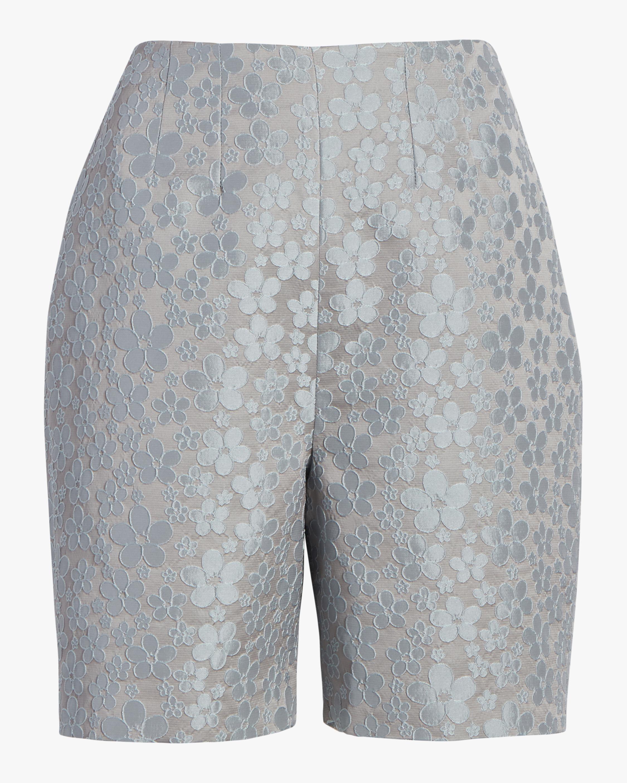 Darted Shorts