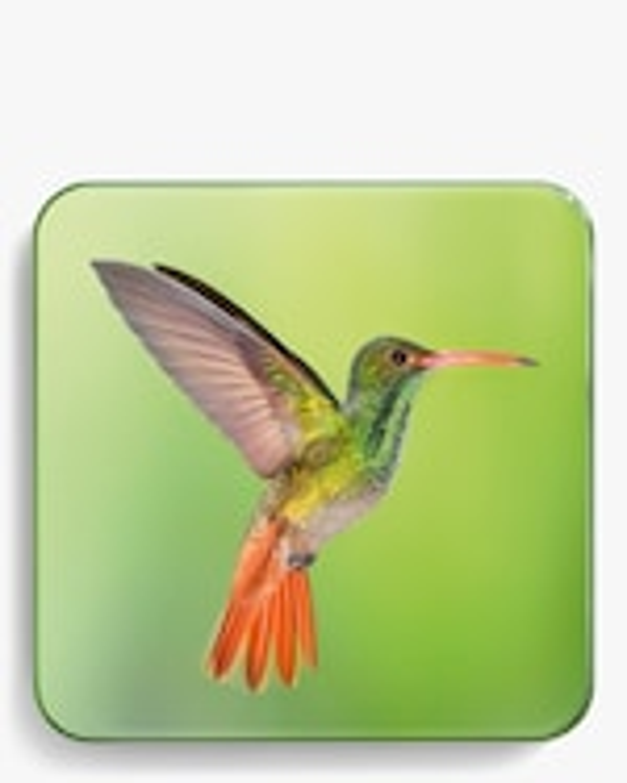 Chantecaille Warm Hummingbird Quartet 2