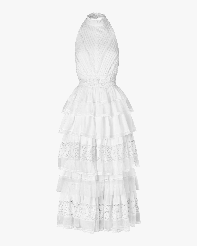 Portrait Midi Dress