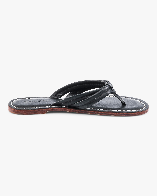 Bernardo Miami Thong Sandal 2