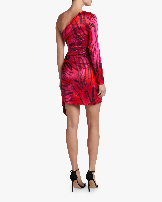 Adriana Iglesias Candela Dress 1