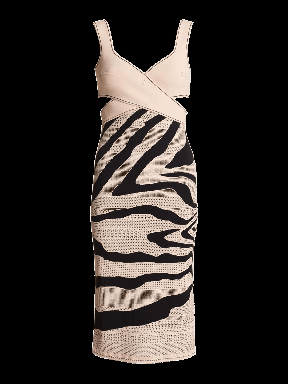 Trompe L'oeil Shadow Zebra Dress