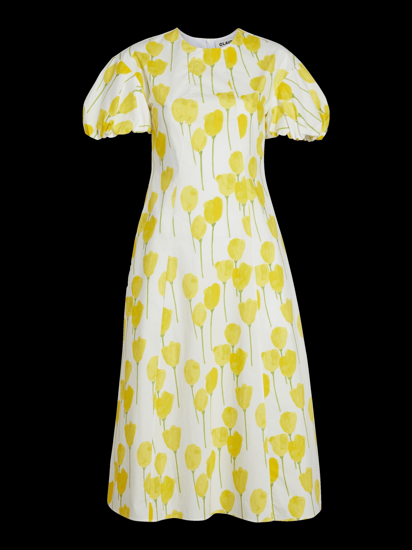 Mushroom Sleeve A-Line Dress