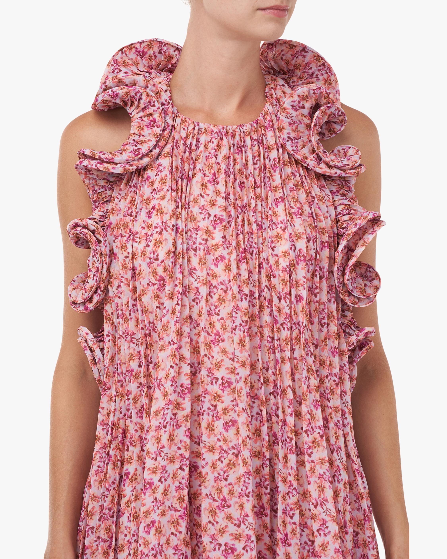 Amur Mimi Shift Dress 4