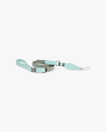 Niko Collar and Leash Set