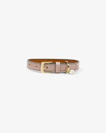 Max-Bone Stella Dog Collar 1