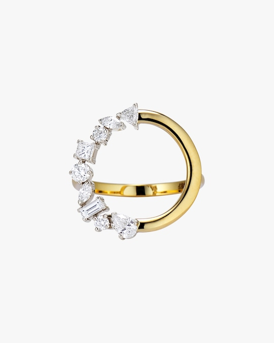 Swati Dhanak Orbit Cluster Ring 0