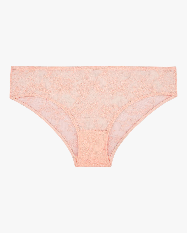Bold Lace Bikini Brief