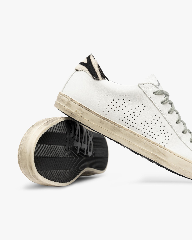 P448 John Zebra Sneaker 3