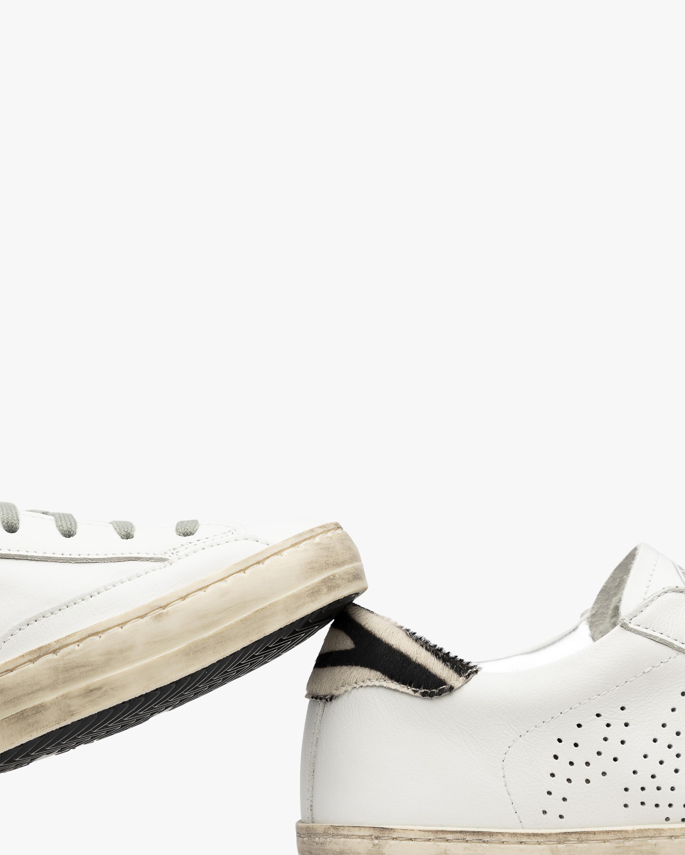P448 John Zebra Sneaker 5