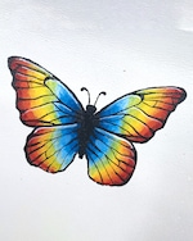Alepel Rainbow Pride Butterfly Mule 2