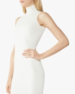 Herve Leger Rib-Knit Sleeveless Turtleneck Dress 4