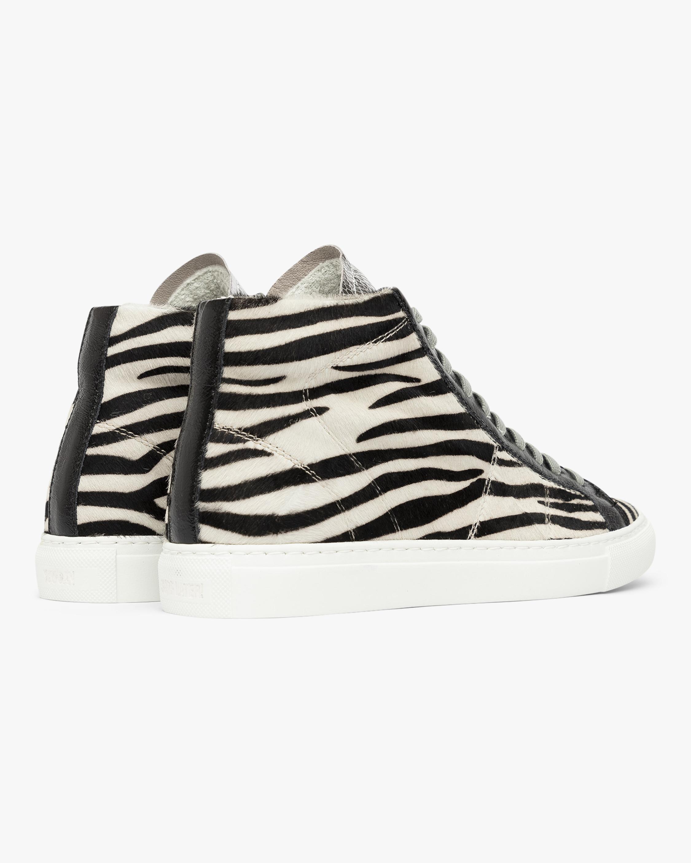 P448 The Star Zebra High-Top Sneaker 2