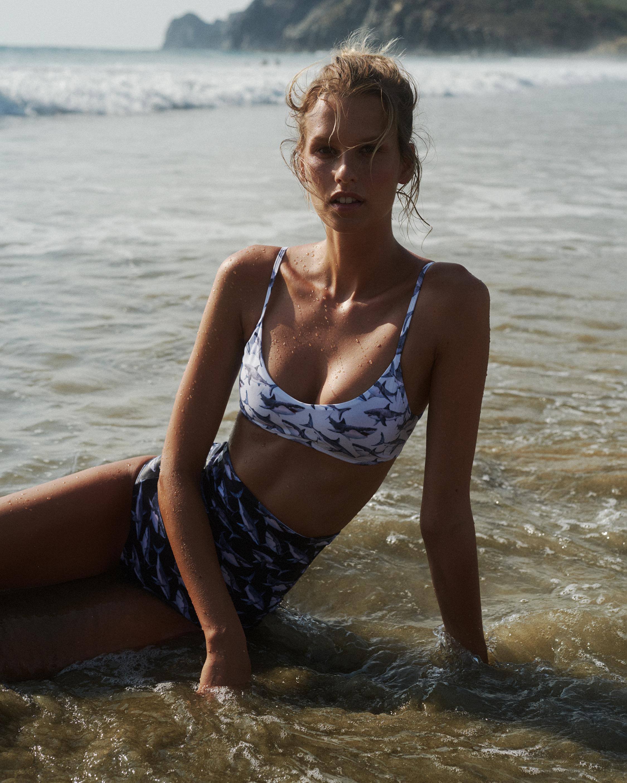 White Shark Sol Bikini Top