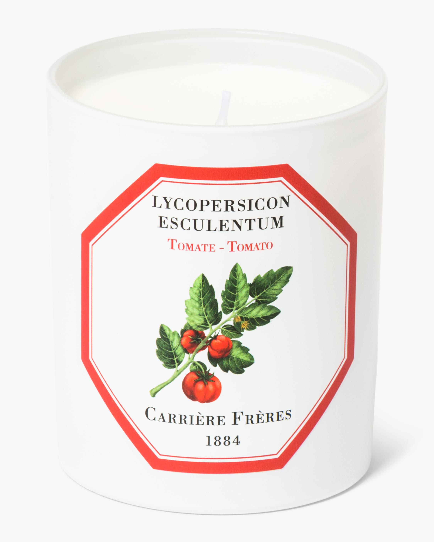 Carrière Frères Lycopersicon Esculentum Tomato Candle 1