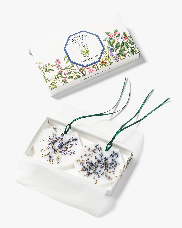 Carrière Frères Lavandula Angustifolia Lavender Botanical Palet 2