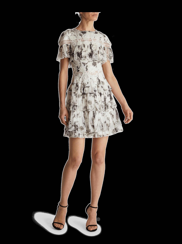 Paola Embroidered Ruffle Dress