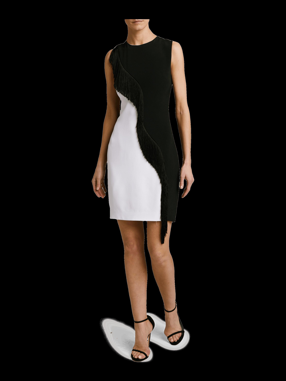 Sleeveless Fringe Mini Dress