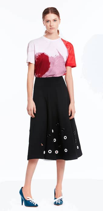 Embroidered Flare Skirt