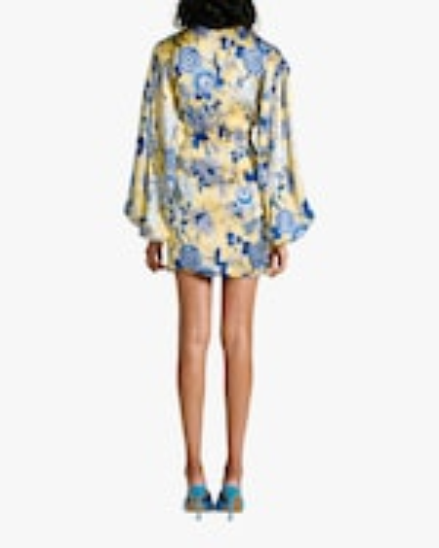 Van Der Kooij Silk Cornflower Long-Sleeve Mini Dress 3