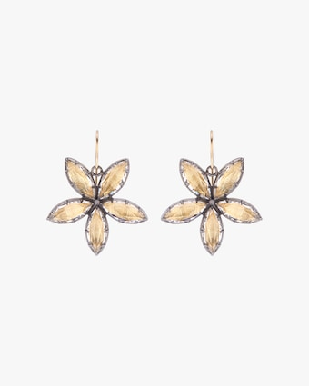 Larkspur & Hawk Sadie Astra Earrings 1