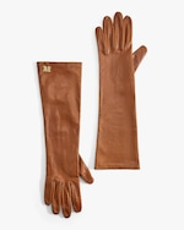 Max Mara Afide Long Gloves 1