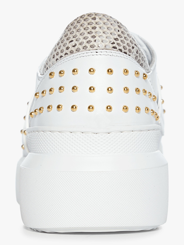 Roberto Cavalli Club Sneakers 3