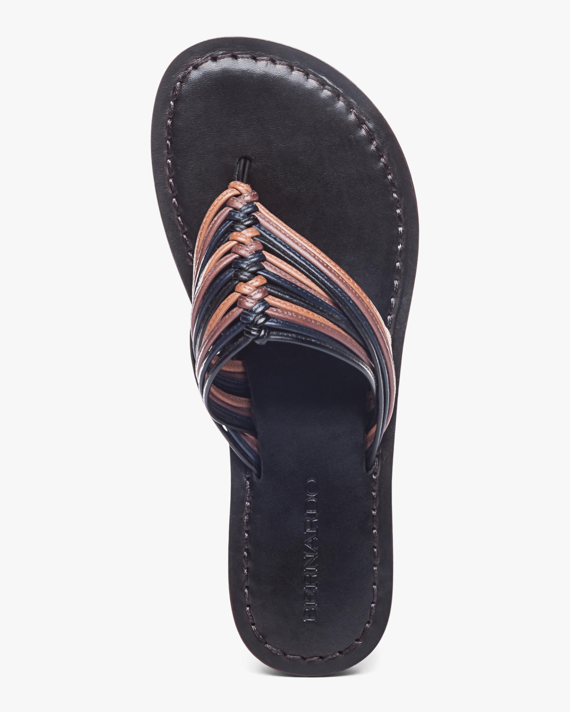Bernardo Talia Thong Sandal 3