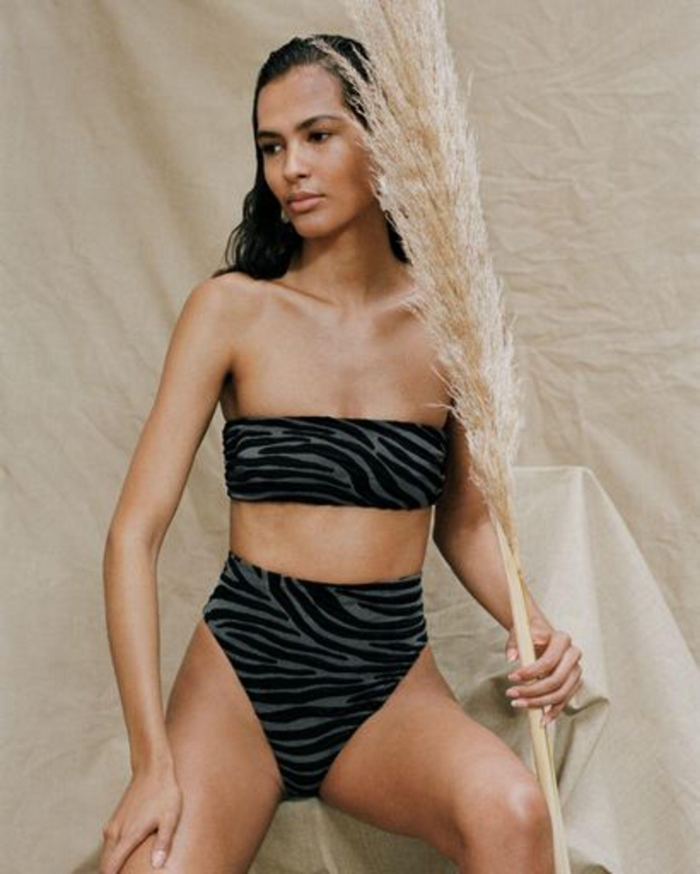 Mara Hoffman Imina Zebra Print High-Waisted Bikini Bottom 1