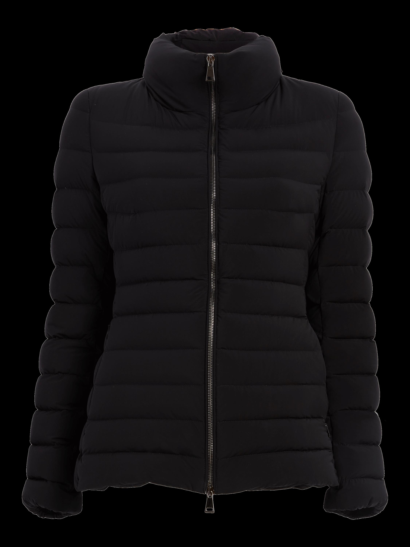 Guillemot Jacket
