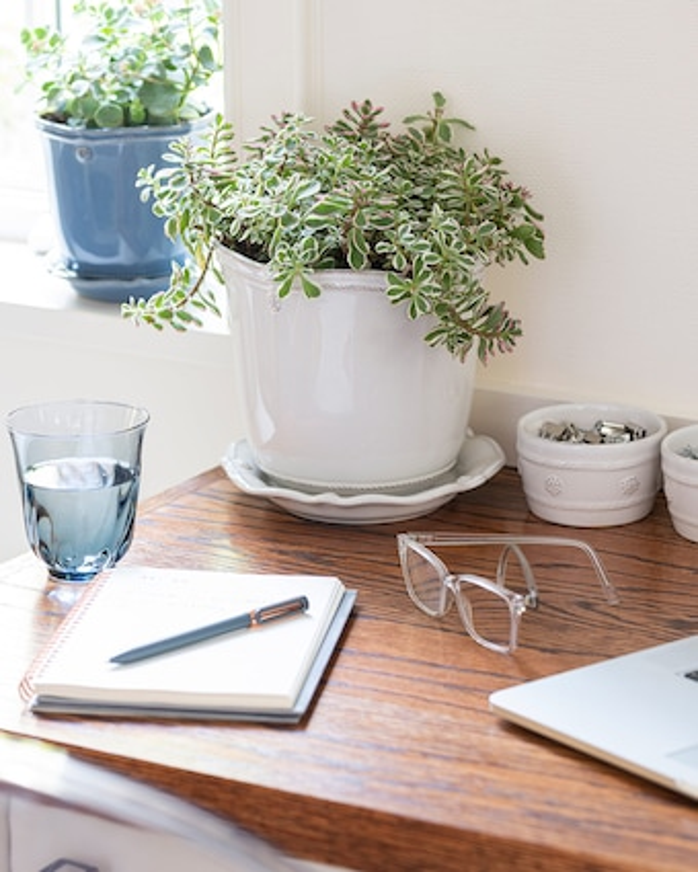 Juliska Berry & Thread Whitewash Planter & Saucer - 5.25in 2