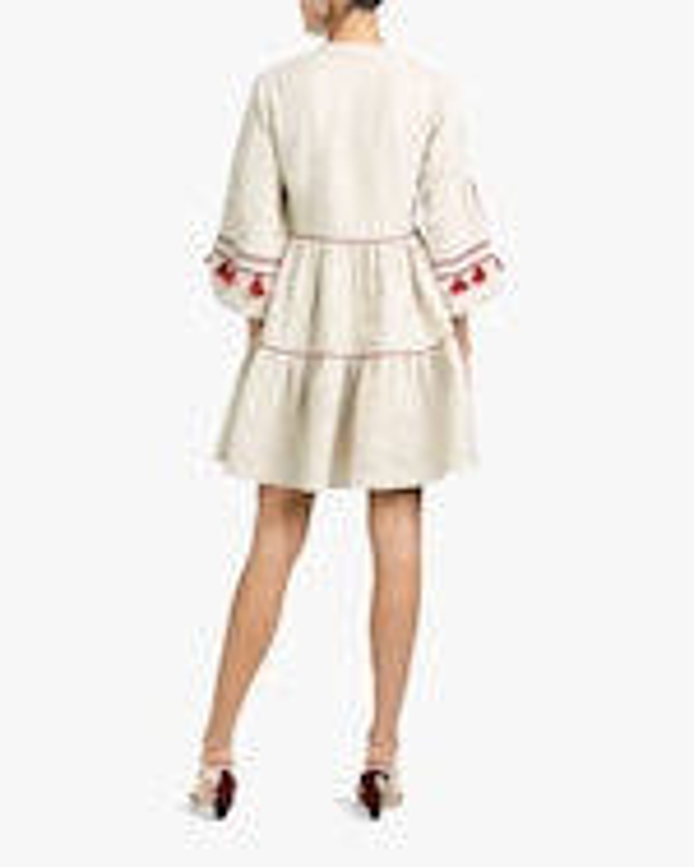 Sachin and Babi Avery Mini Dress 3