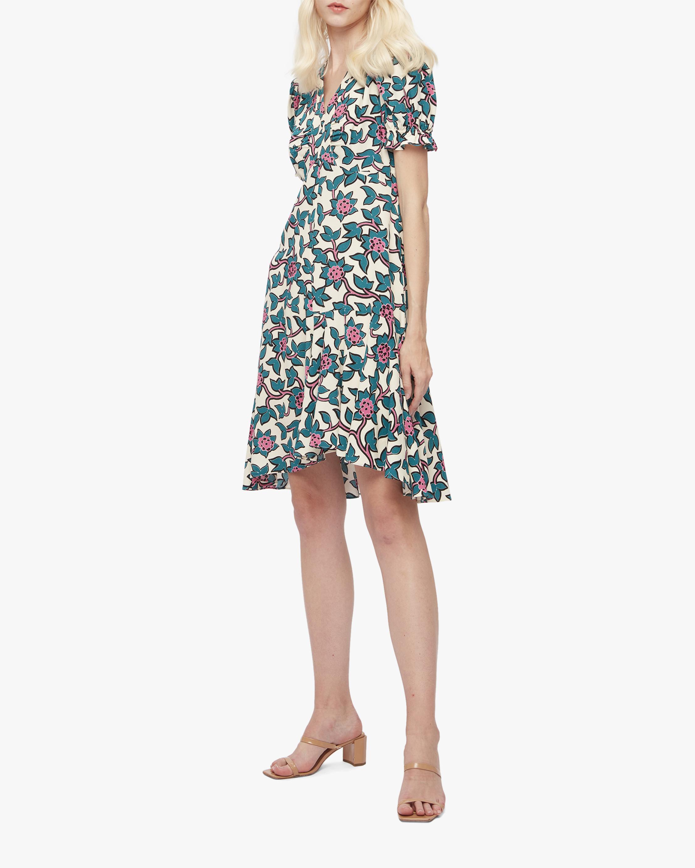 Diane von Furstenberg Alexis Dress 2