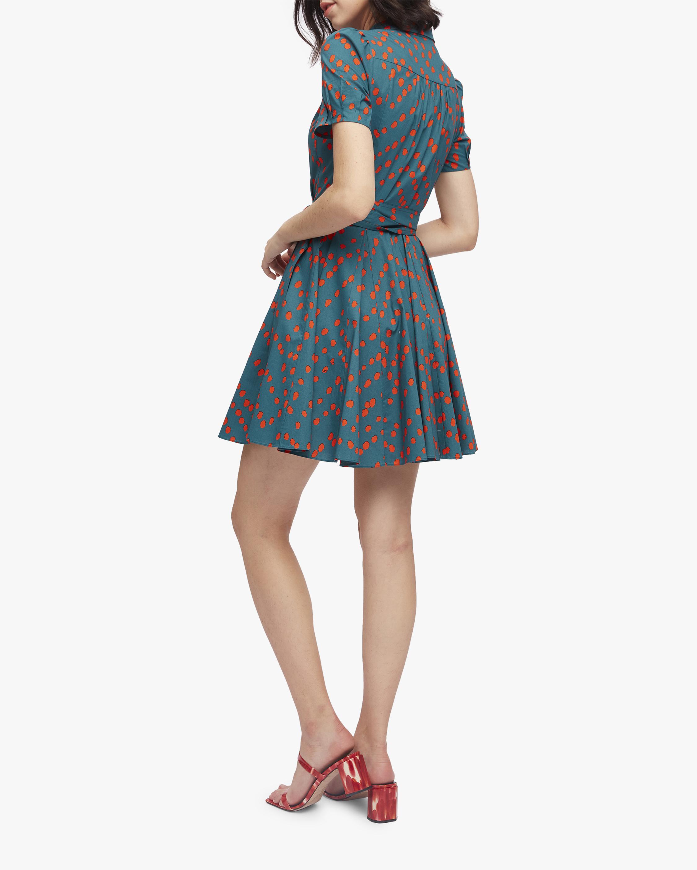Diane von Furstenberg Evalina Dress 2