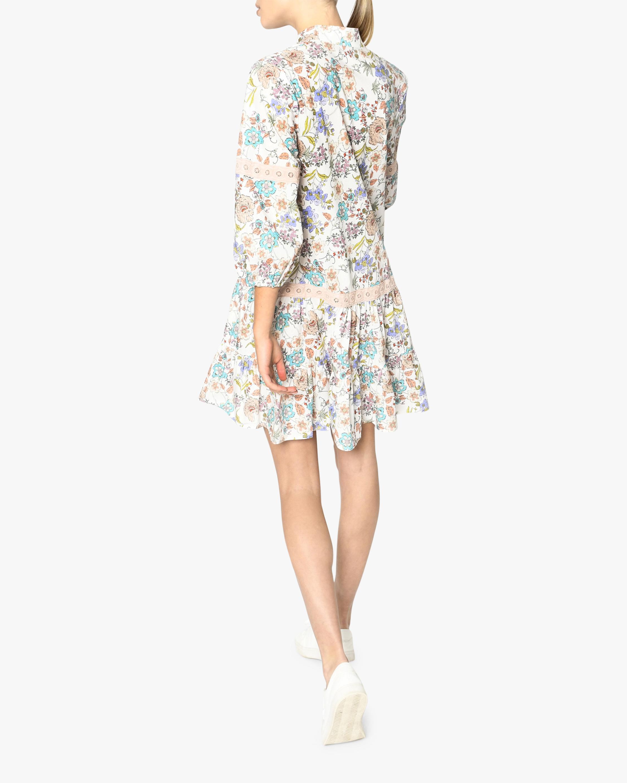 Nicole Miller Jasmine Floral Shift Dress 3