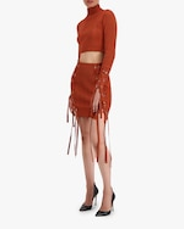 Herve Leger Rib Lace Mini Skirt 3