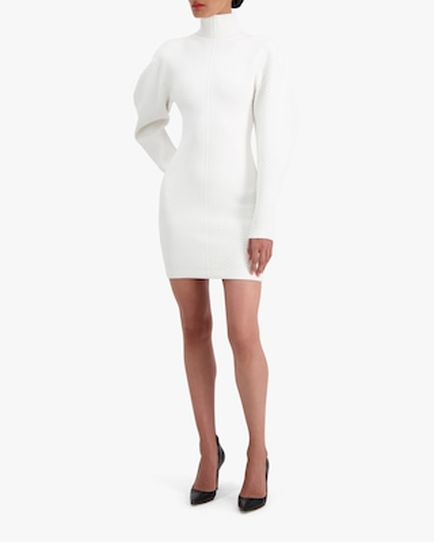Herve Leger Long-Sleeve Contour Mini Dress 2