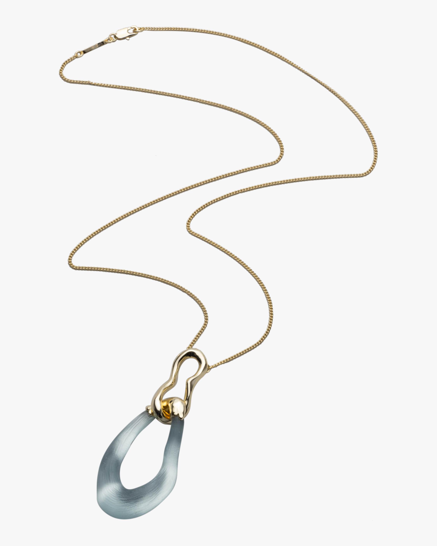 Alexis Bittar Lucite Double-Link Pendant Necklace 2