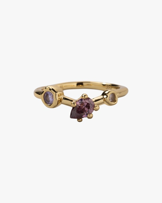 Alexis Bittar Asterales Cluster V Ring 0