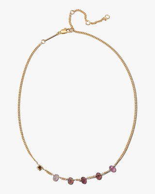 Alexis Bittar Asterales Stone Studded Necklace 2