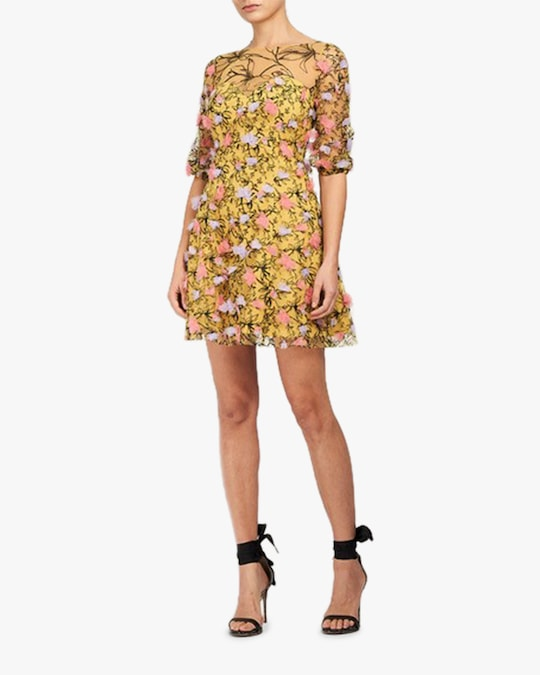 Marchesa Notte Embriodered-Tulle Mini Dress 0