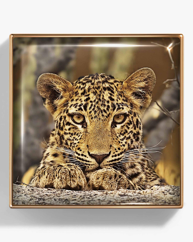 Chantecaille Leopard Luminescent Eye Shade 2